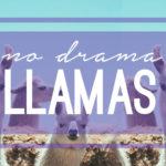 No Drama Llamas