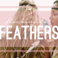 Flocking To Feathers