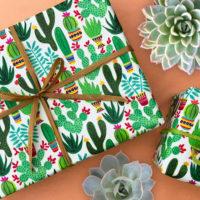Desert Vibes: Cactus